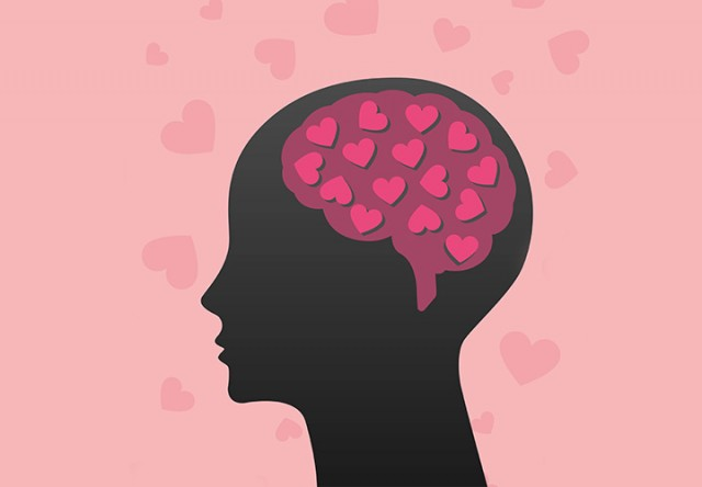 reaccion del cerebro en el sexo