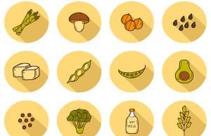 fuentes de proteina