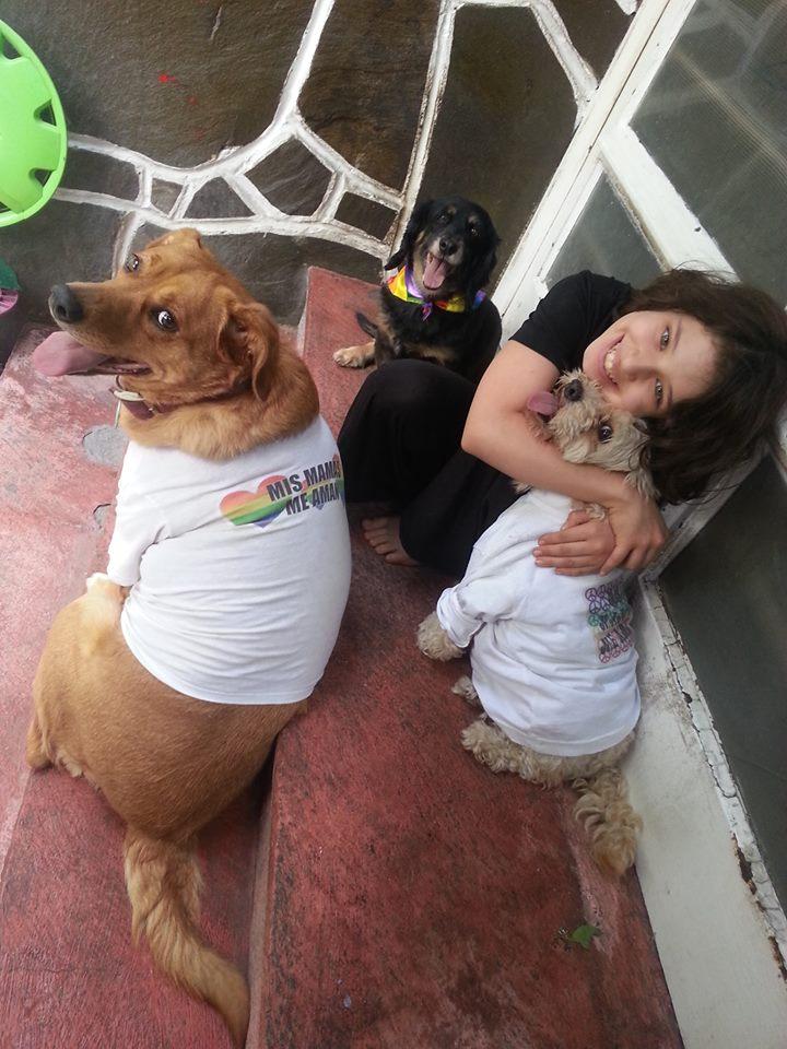 Gala Mascotas