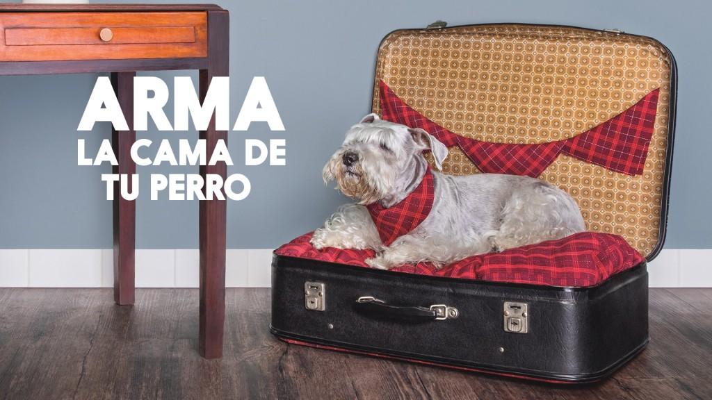 Video c mo hacer una cama para tu perro revistamoi - Como hacer una cama para perro ...