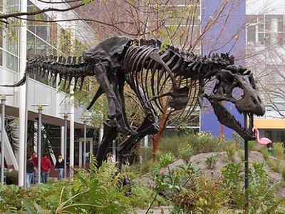 dinosaurio-google