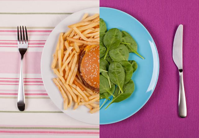 comida chatarra vs sana