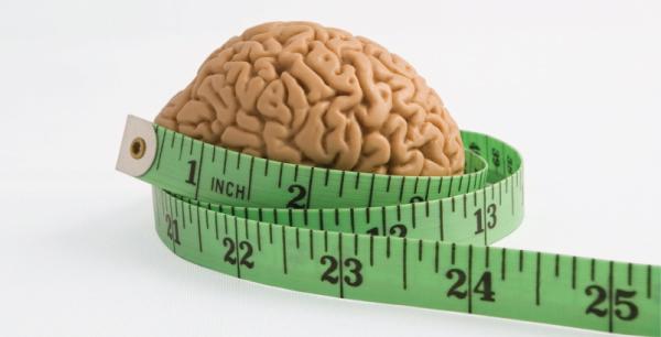 brain600