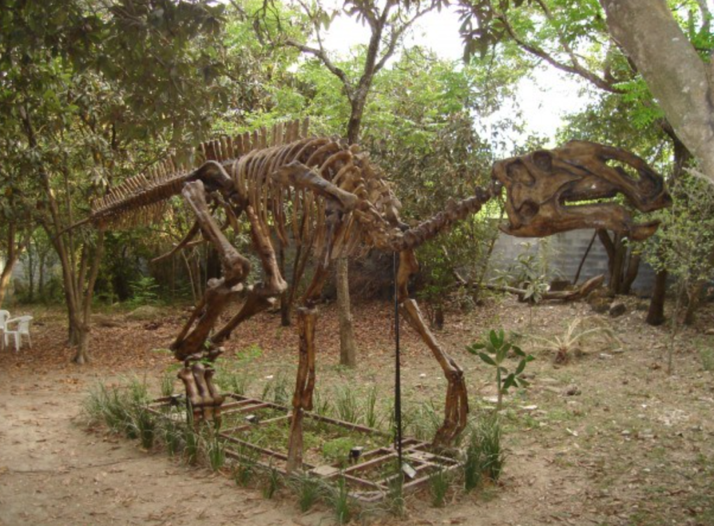 Casa de la Cultura, dinosaurio