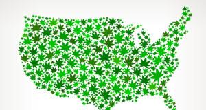 mariguana en estados unidos