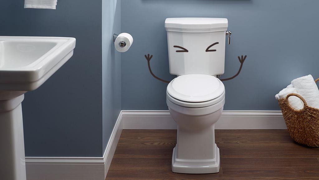 10 datos curiosos sobre el wc moi for Que significa wc